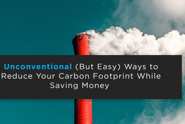 Unconventional (But Easy) Ways to Reduce Your Carbon Footprint While Saving Money
